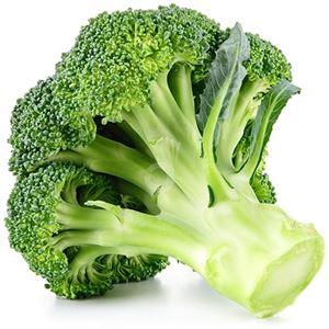 Broccoli Passover Landau S Kosher Grocery Delivery In Monroe And Kiryas Yoel